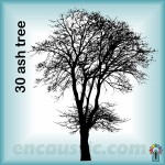 99550030TA_ash_tree_rubber_stamp_600
