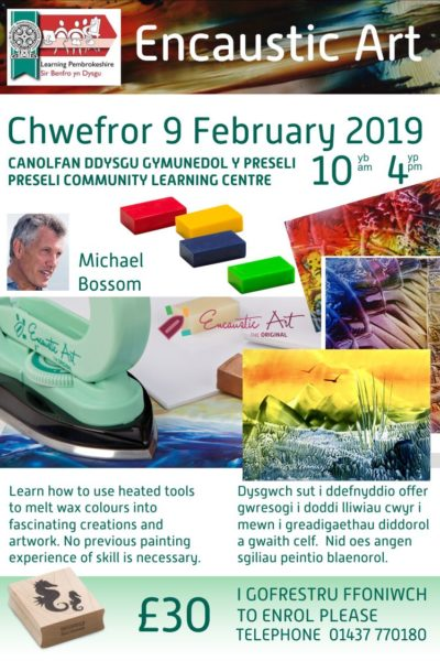 20190209_Learning_pembrokeshire_MBdaycourse_poster_web